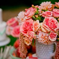 Dahlias, Roses, and more!