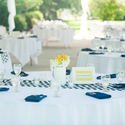 1382368498 thumb photo preview yellow and blue modern wedding 10
