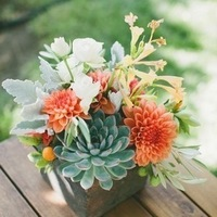Dahlias and Succulents