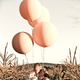 1383260470 small thumb claris photography real new hampshire rustic barn wedding big pink balloons in field