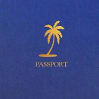 Metallic Palm Tree Passport Invitation - DreamDay Invitations