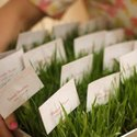 1384806616 thumb 1367589191 content diy a wheat grass wedding 10