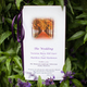 1384874601_small_thumb_romantic-fall-minnesota-wedding-8