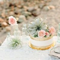 Relaxed Beach Ceremony