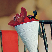 Containers for Flowers/petals