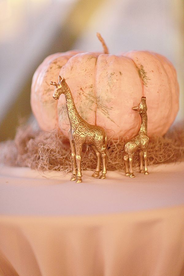 Flowers & Decor, pink, gold, Centerpieces, Fall Wedding Flowers & Decor, Glam Wedding Flowers & Decor, Blush, Pumpkins, Boho Chic Wedding Flowers & Decor, light pink, decorative objects