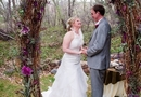 1386204642_thumb_1386181222_purple-arizona-spring-wedding-18