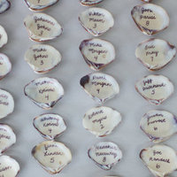 Sea Shell Place Cards