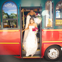 Trolley Transport