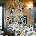 1387394506 thumb photo preview winter wedding decor 26