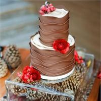 Chocolate  Winter Wedding Cake