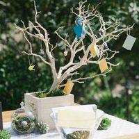 Branching Escort Card Display