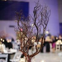 Branch Centerpiece
