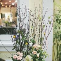 Florals and Branches