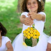 Flower Girl Pomanders