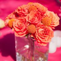 Roses and Craspedia