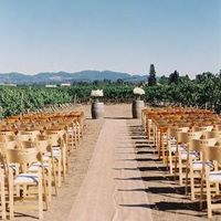 Beautiful Vineyard Ceremony