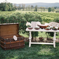Vineyard Wedding Station