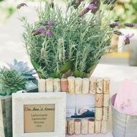 Vineyard Wedding Details