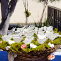 1389278561 thumb photo preview classic enchanted garden california wedding 8