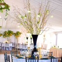 1389279625 thumb photo preview classic enchanted garden california wedding 18