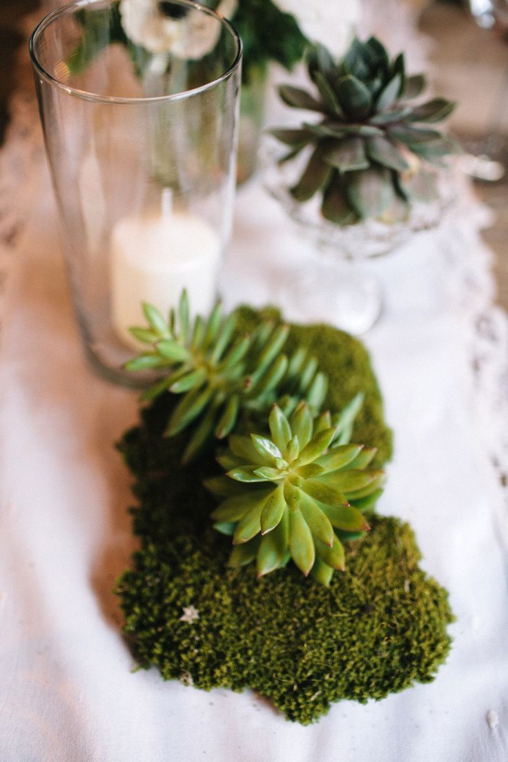 Moss Tablescape Accents