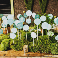 Creative Moss Escort Card Display
