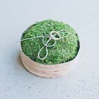 Simple Moss Ring Pillow