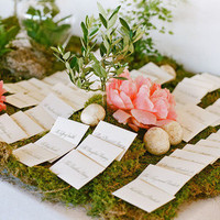 Moss Stationery Display