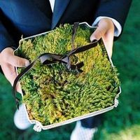 Elegant Moss Ring Pillow