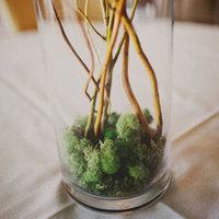 Moss and Branch Centerpiece