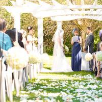 My Perfect garden wedding