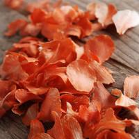 Preserved Orchid Petals Orange