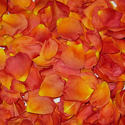 1390366410_thumb_photo_preview_living_easy_flower_petals