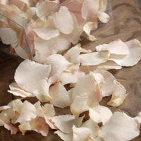 Orchid Petals Lady White Natural Preserved Petals