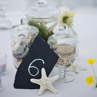 Beach Centerpiece Display