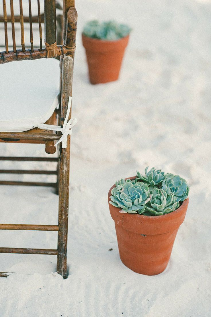 Potted Succulent Aisle Markers