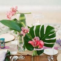 Palm Leaves and Orchids