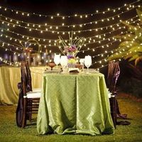 Green Beach Wedding Decor