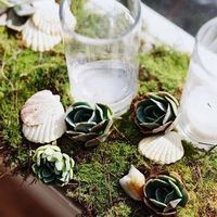 Eco-Friendly Beach Wedding