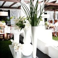 Modern Beach Wedding Decor