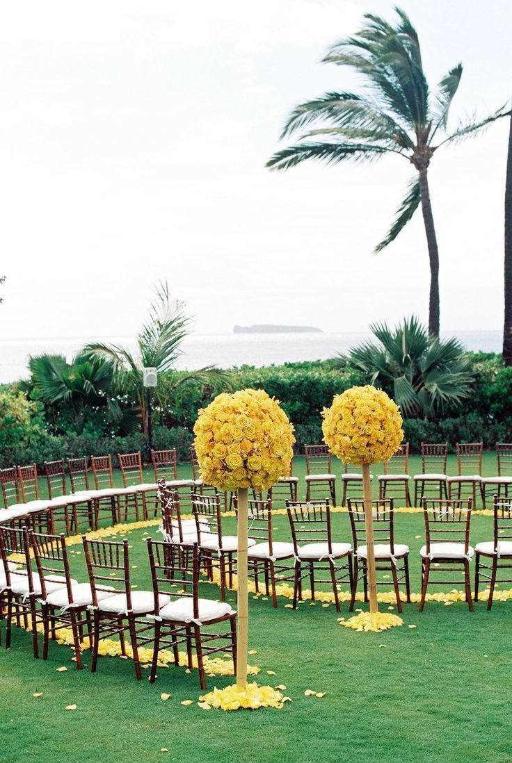 Modern Beach Ceremony Decor