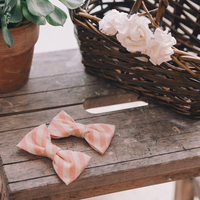 Bow Ties for the Ring Bearers