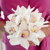 Flowers & Decor, white, ivory, yellow, pink, Bridesmaid Bouquets, Beach Wedding Flowers & Decor, Classic Wedding Flowers & Decor, Spring Wedding Flowers & Decor, Summer Wedding Flowers & Decor, Orchids, Fuchsia