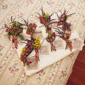 1391623178_thumb_boho-chic-massachusetts-wedding-11
