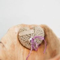 Twine Heart Ring Pillow