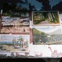 Postcard Decor