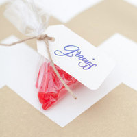 Sweet Swedish Fish Favors