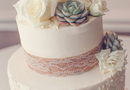 1394481681_thumb_succulent-lace-wedding-cake-1