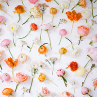 7 Easy Photo Booth Backdrop Ideas